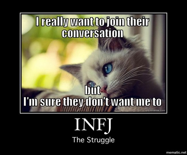Infjs Dogs Or Cats