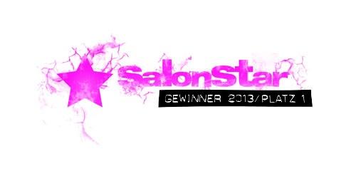 SalonStar 2013
