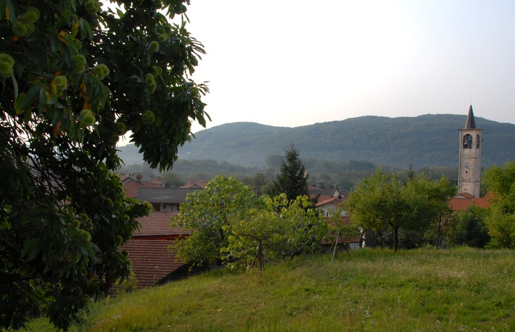#Pisano ( #Novara #Piedmont #Italy )