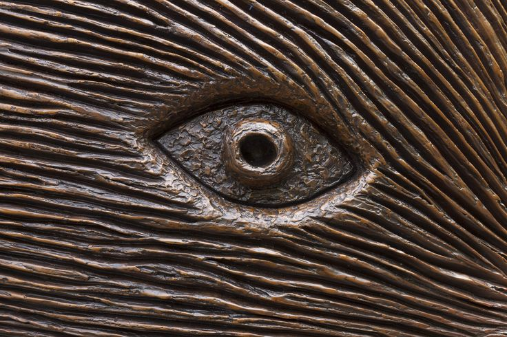 McClelland Sculpture Park + Gallery