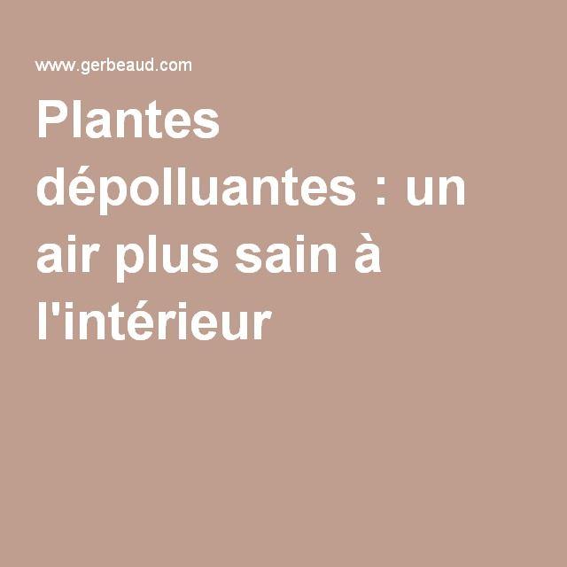 1000 idées sur le thème Plantes Dépolluantes sur Pinterest  Plante ...