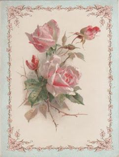 light pink roses ~ vintage postcard