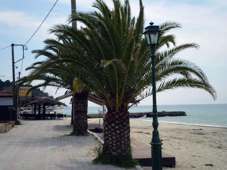 Siviri #Halkidiki #beach http://siviri-houses.com/