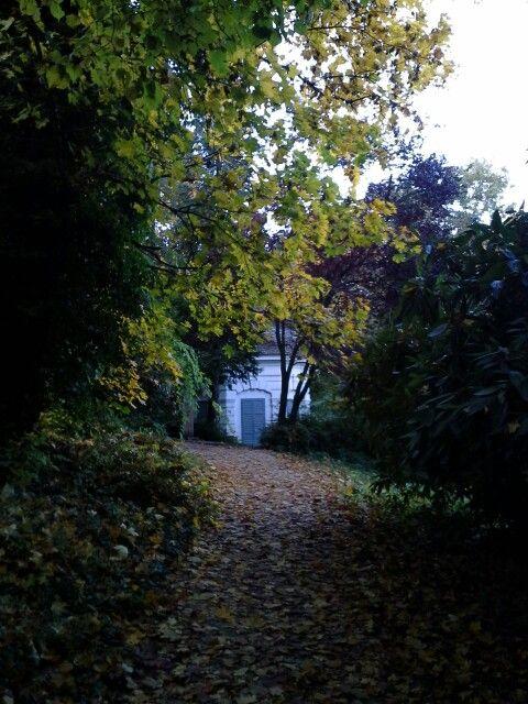 Avarszőnyegen, az erdei kis házhoz.