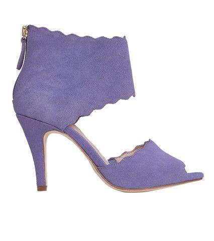 Momentum Purple   Sargossa