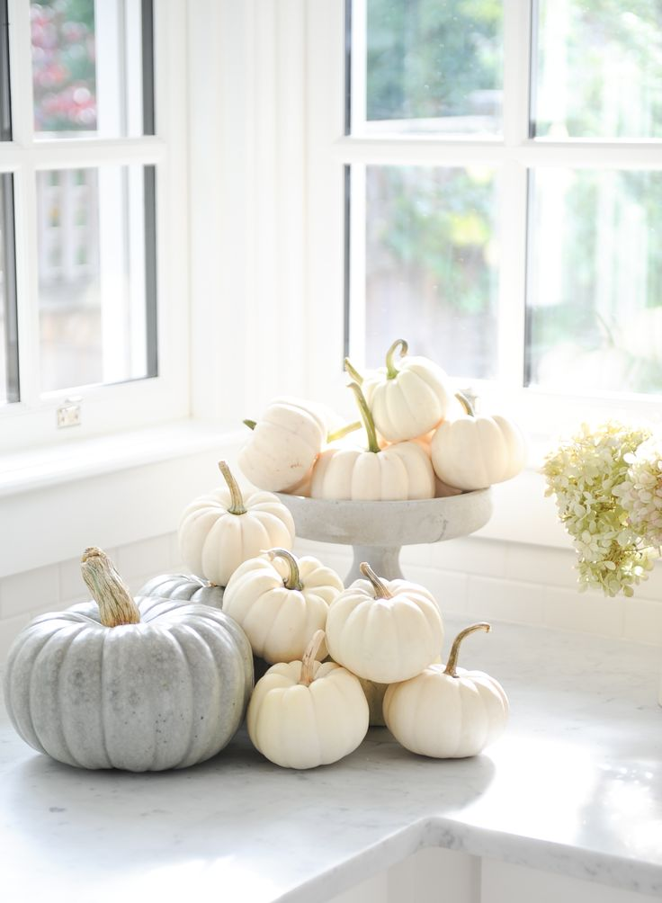 This is how Tracey Ayton celebrates Autumn and Halloween Photo by Tracey Ayton