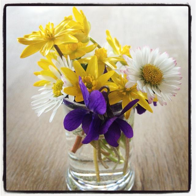 More Springflowers - ah ....