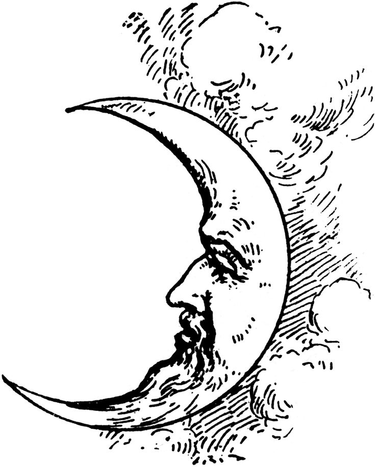 Man In The Moon Clipart Black And White | www.pixshark.com ...