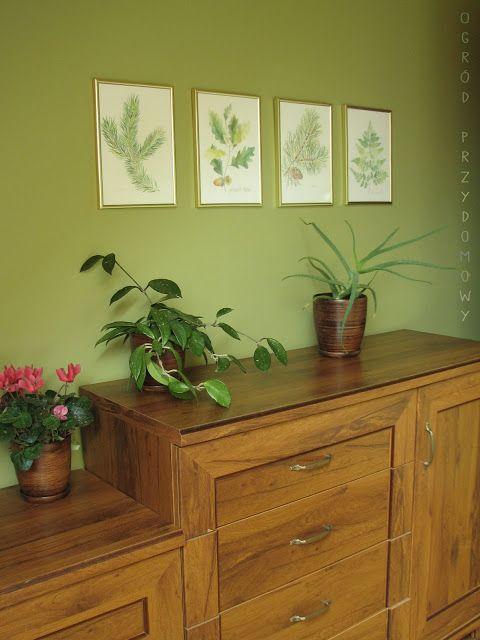 Forest drawings, paint, picture, illustration,  Ogród przydomowy: Leśne rysunki