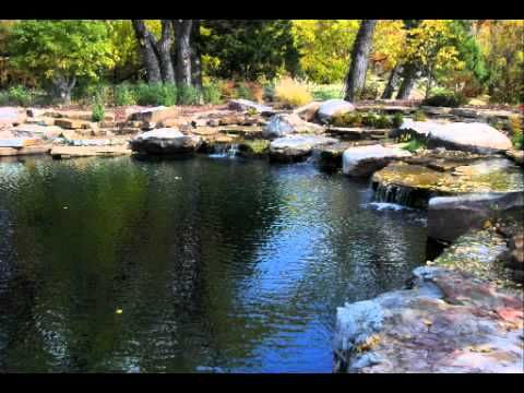 Best 25 natural swimming ponds ideas on pinterest for Garden pond design books