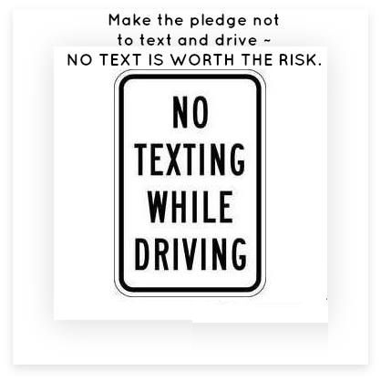 Nick Travers (NtDriving) on Pinterest - pledge form