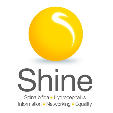 Logo Design Examples: SHINE - (ASBAH Rebrand)    freethinkingdesign.co.uk