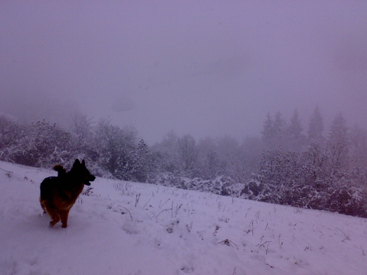 Cerro Veronese