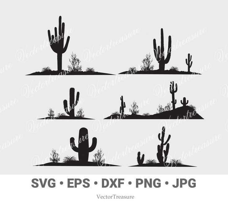 Cactus Vector Svg Cactus Silhouette Png Jpg Dxf Eps Cactus Cactus Clip Art Silhouette Cricut Cactus Digital Files Kaktus Silhouette Etsy
