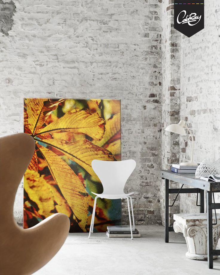 Jesienne uzupełnienie czarno- białego wnętrza na wydruku Coloray Canvas.