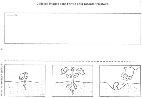 Images séquentielles Germination des plantes