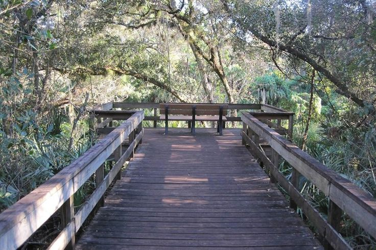 Turkey Creek Sanctuary: A Natural Escape in the Heart of Palm Bay Escape the hustle of the city in this unique, wild park