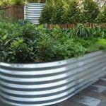 Elongated Garden bed