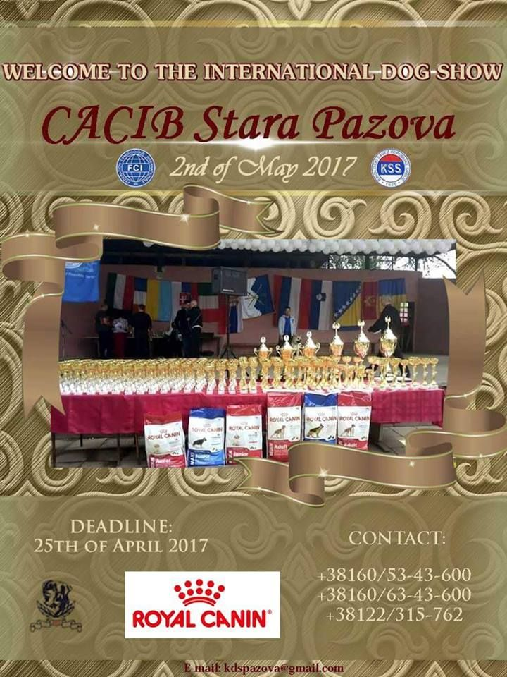 STATISTICS-INTERNATIONAL DOG SHOW C.A.C.I.B. Stara Pazova (Serbia)-02.05.2017.