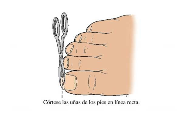 Como cortarse las uñas, como cortar uñas delos pies. Únete al CLUB, síguenos! #diseñouñas #nails #uñasbonitas