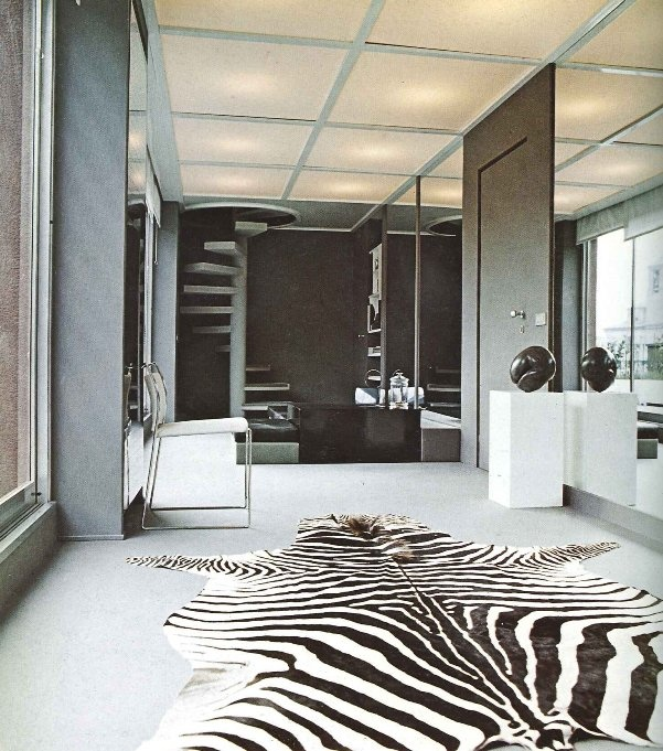 45 best images about zebrahuiden on pinterest zebra for Living room ideas with zebra rug