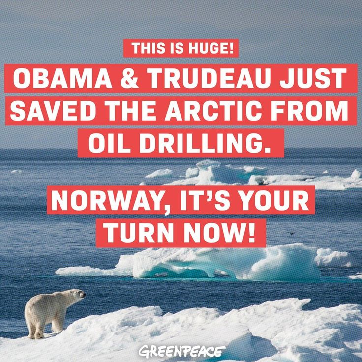 🎉 Barack Obama & Justin Trudeau just announced that Arctic drilling is out of bounds in the US and Canada!!! And in the US the block is PERMANENT! This is an absolutely HUGE victory for the 8 MILLION people who signed, rallied, took action and stood up for the Arctic. We're not done yet - Norway plans to drill the Arctic in 2017. Sign the link in our bio, and we'll present your name in court as evidence of the global movement against Arctic oil…