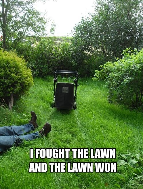 Mowing Grass in the Hot Sun...
