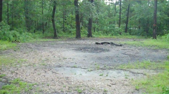 Devil's Tramping Ground In North Carolina - A Home Of Devils