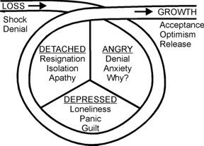 1000+ ideas about Stages Of Grief on Pinterest | Grief Stages ...