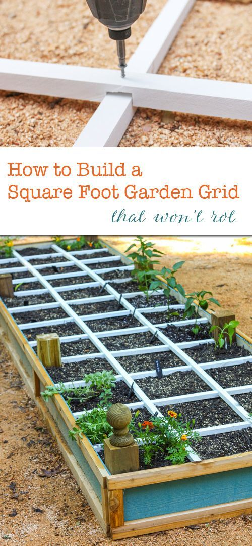 Best 25 square foot gardening ideas on pinterest square foot garden layout i square foot and - Square meter vegetable garden ...