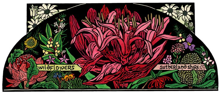 Wildflowers Sutherland Shire - Limited Edition Handcoloured Linocut by Lynette weir