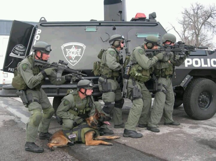 Used Cars Erie Pa >> Utah Highway Patrol SERT Team | K9's & MWD's | Pinterest