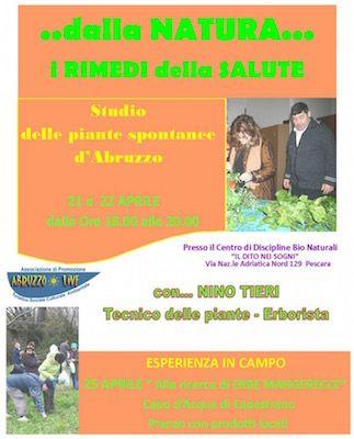 """Giornate di studio sulle piante spontanee d'Abruzzo il prossimo 21 e 22 aprile presso la Sede dell'Associazione Asd """"Il dito nei sogni"""" a Pescara"""