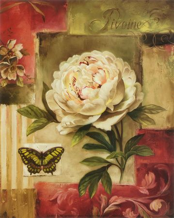 Peony and Butterfly Prints by Lisa Audit at AllPosters.com