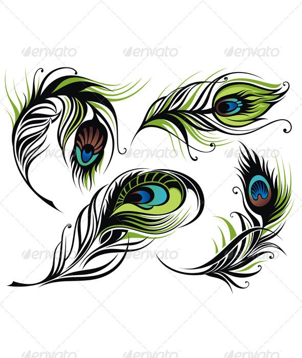 17 best images about peacock graphics on pinterest cottage chic clip art and graphics. Black Bedroom Furniture Sets. Home Design Ideas