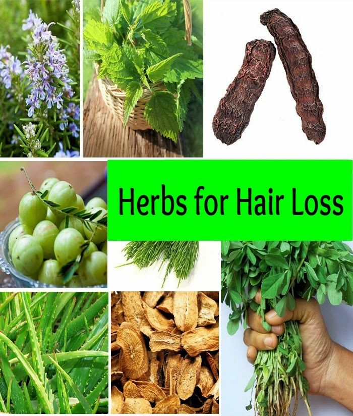 Herbs For Hair Loss | Health Villas