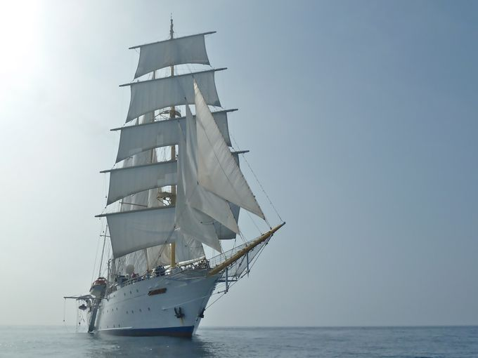 Star Clipper. A 4 masted barquentine cruise ship. Ιδιοκτησία & Διαχείριση: Star Clippers Ltd. Ολοκληρώθηκε στις 01/04/1992. 2.298GT ~ 114,57 μ.μ. ~ 15,14 μ.πλάτος ~ 4 κατ/τα ~ 8~10knots ~ 170 επ. ~ 72 α.πλ.