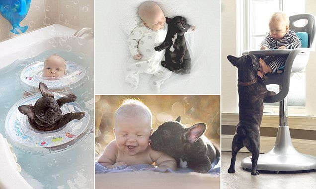 Photographer Ivette Ivens, originally from Lithuania but now living in Chicago, has documented the 'out-of-control cuteness' of her son Dilan and their pet puppy Farley, who were born on the same day.