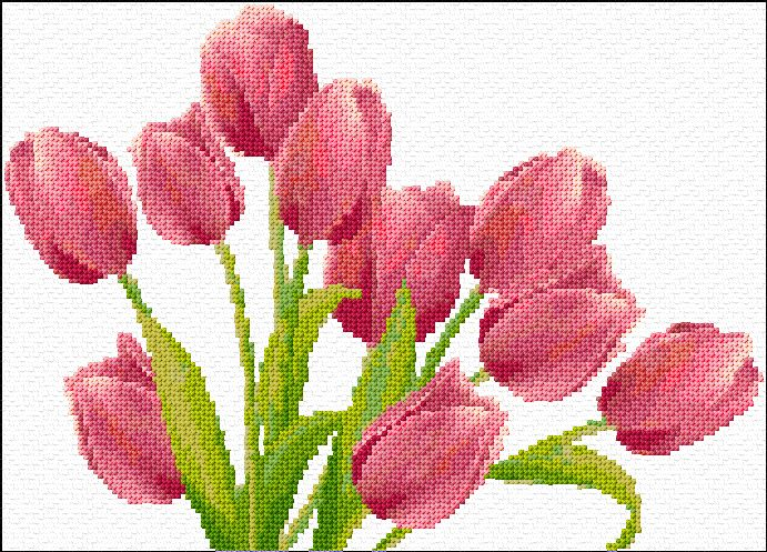 tulips. nice chart with floss numbers and symbols. complicated, but would be gorgeous