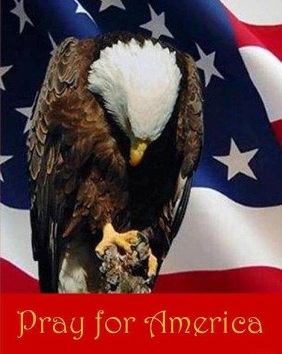 EAGLE PRAYING with U S  FLAG on One 16 nch Fabric Panel to