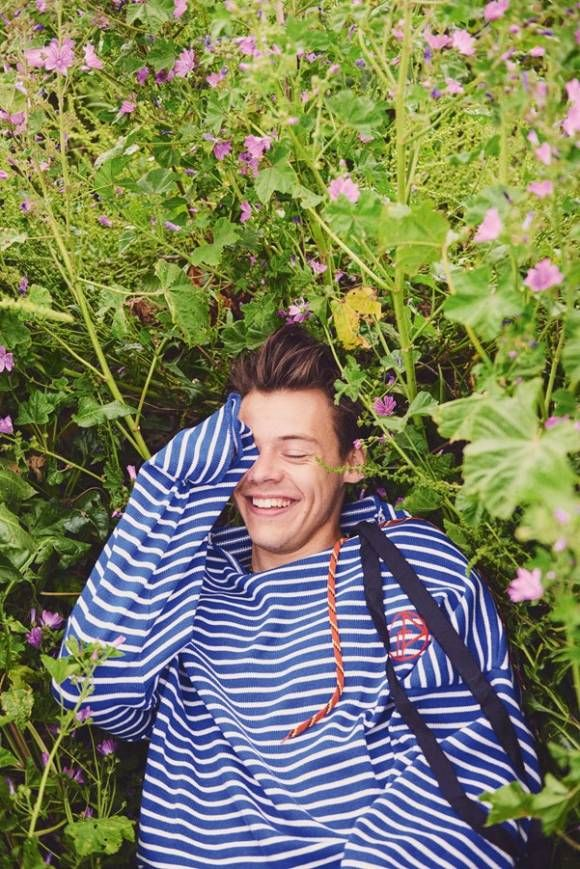 I want a comfy sweater like this to lay in a flowery field in :) Or just Harry, if possible