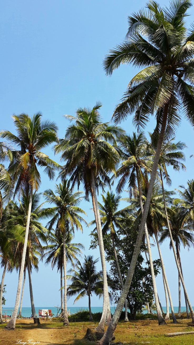 Lam Son Beach, Pak Nam Lang Suan,Chumphon,Thailand