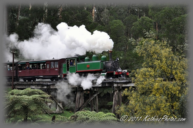 Puffing Billy on the Trestle Bridge.  The Trestle Bridge is 2 mins from where we live. I love this shot and took it in 2011. Was lucky to be there as the train was passing over.
