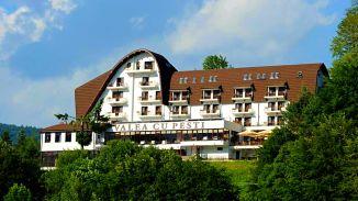Hotel VALEA CU PEȘTI, clasificat 4 stele, este amplasat pe șoseaua Transfăgărășan, într-o zonă în care beneficiați de cazare, masă și agrement, dar și de o priveliște minunată a Lacului Vidraru și a Munților Făgăraș.