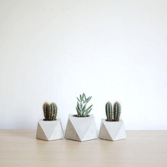 Plantadores suculentos geométricos - conjunto de jardinera concreto 3