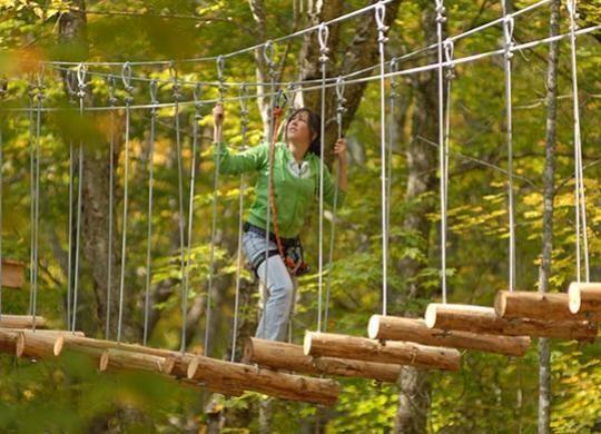 Forêt de maître corbeau, Parc de sentiers aériens dans les arbres, parcours d'aventure, hébertisme. | Domaine Valga - Forêt de maître corbeau