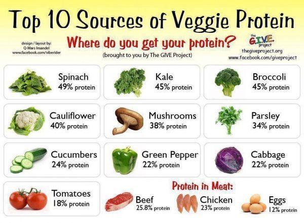 protein in vegetables vs meat chart - Google Search