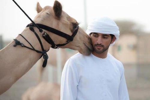 Sheikh Hamdan Bin Mohamed Bin Rashid Al Maktoum
