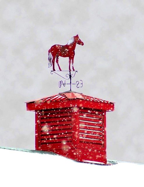 Red winter weather vane