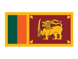 Sri Lanka Flag Temporary Tattoo #flags #srilankaflag #temporarytattoos #t4aw